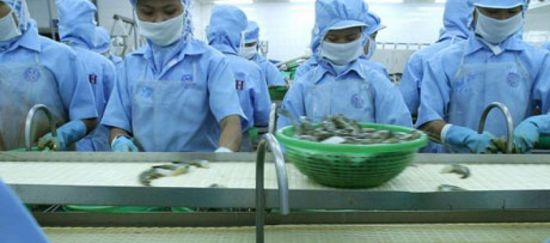 Thai Government incentives for food industry JVs
